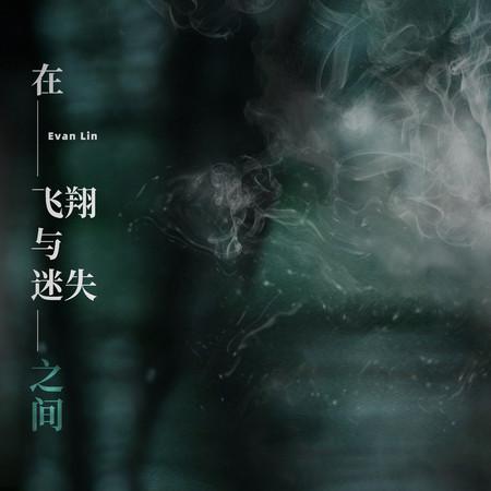 在飛翔與迷失之間(Lost) 專輯封面