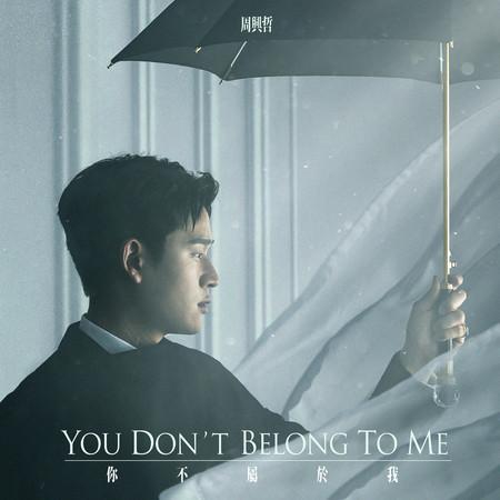 你不屬於我 (《比悲傷更悲傷的故事》影集版片尾曲) 專輯封面